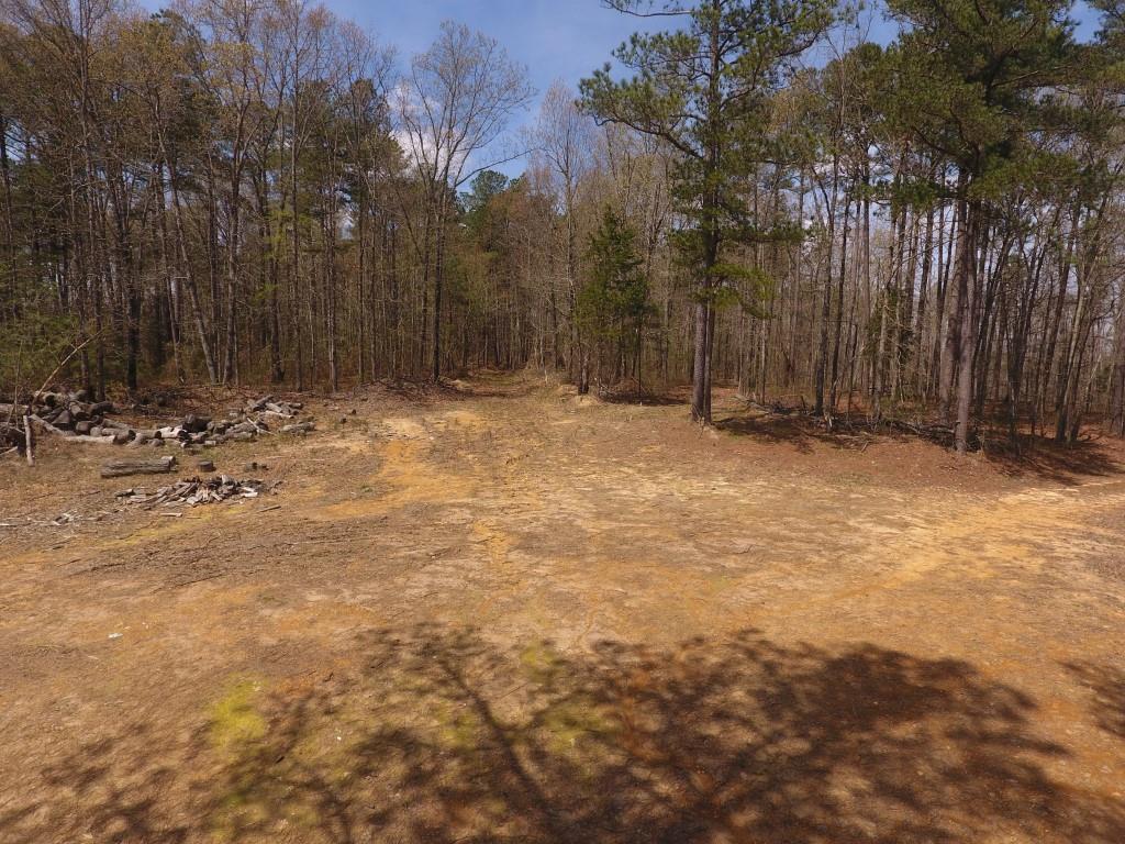 0 Preston Baggett RD Tennessee Ridge, TN 37178