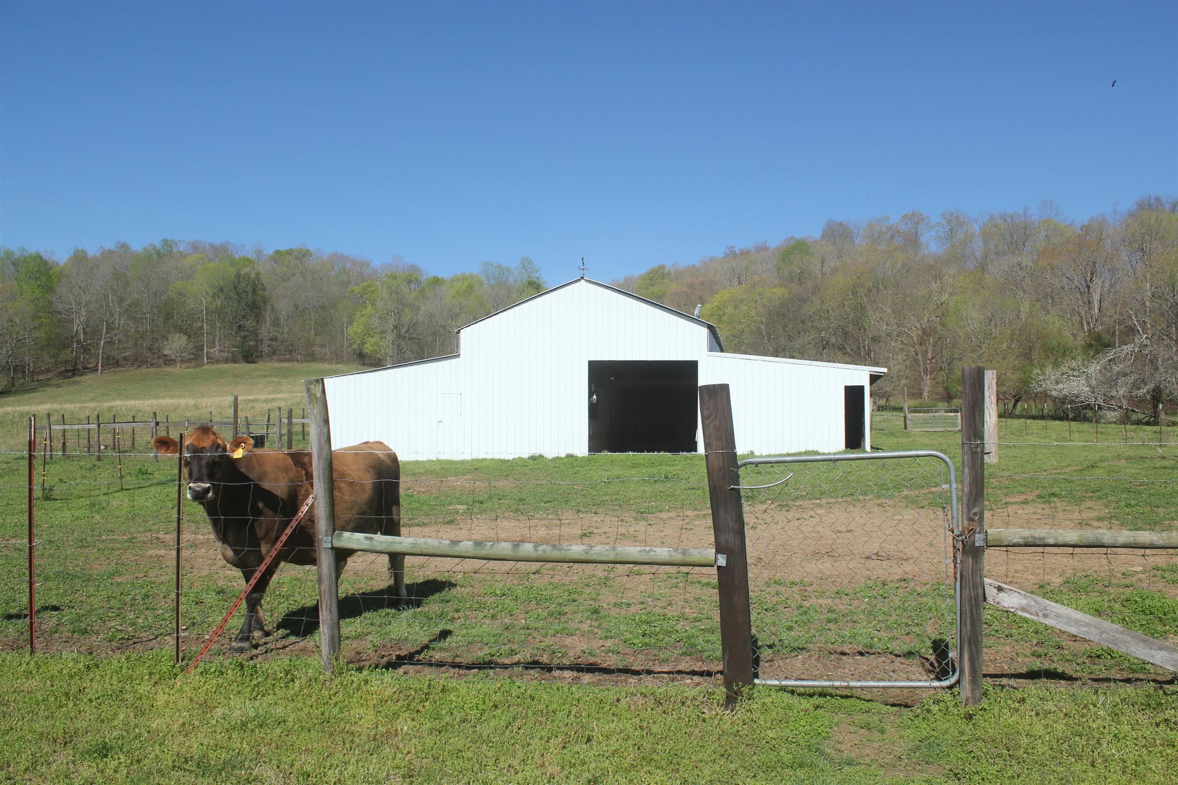 1722 Swan Creek Rd - photo 16