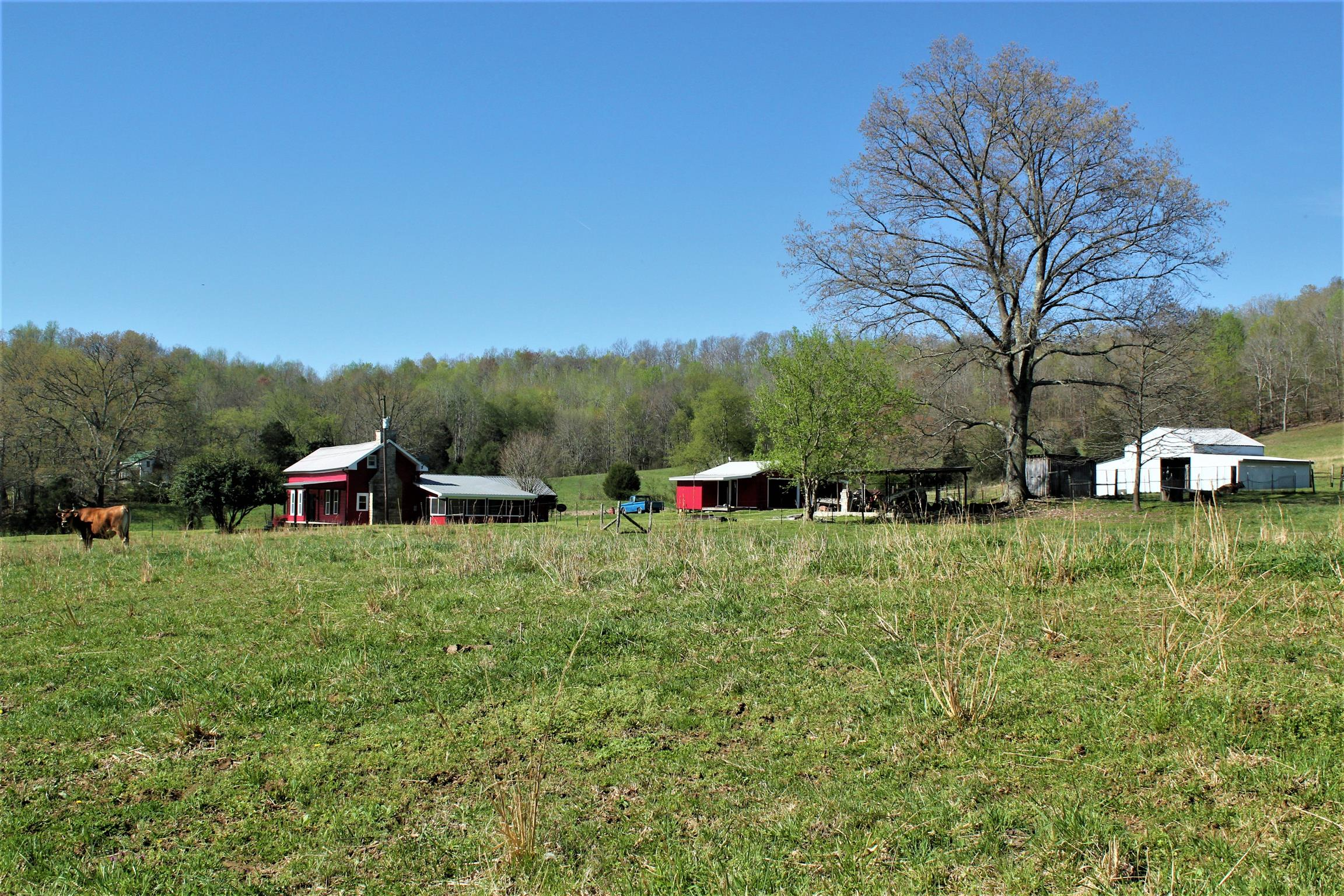 1722 Swan Creek Rd - photo 6