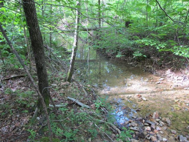 0 Roan Creek Rd Lobelville, TN 37097