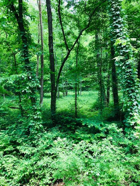 0 Pond Creek Rd Pegram, TN 37143