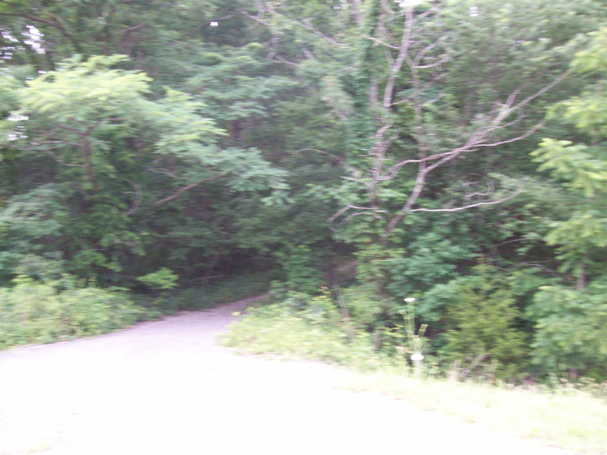 0 Rowe Gap Rd Belvidere, TN 37306