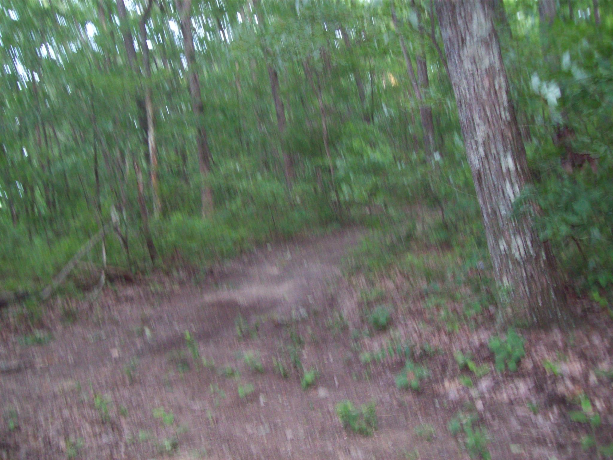 0 Rowe Gap Rd - photo 7