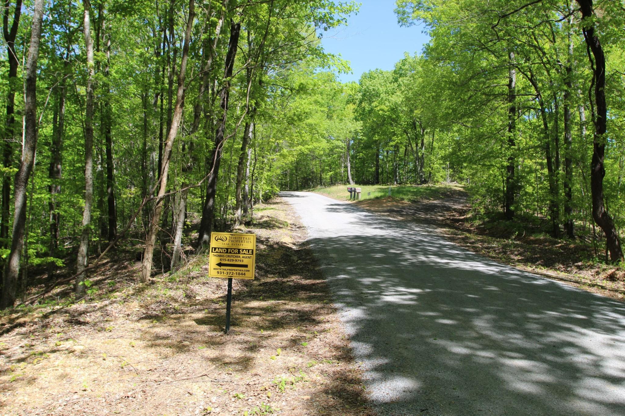 primary photo for 0 Lineport Rd., Bumpus Mills, TN 37028, US