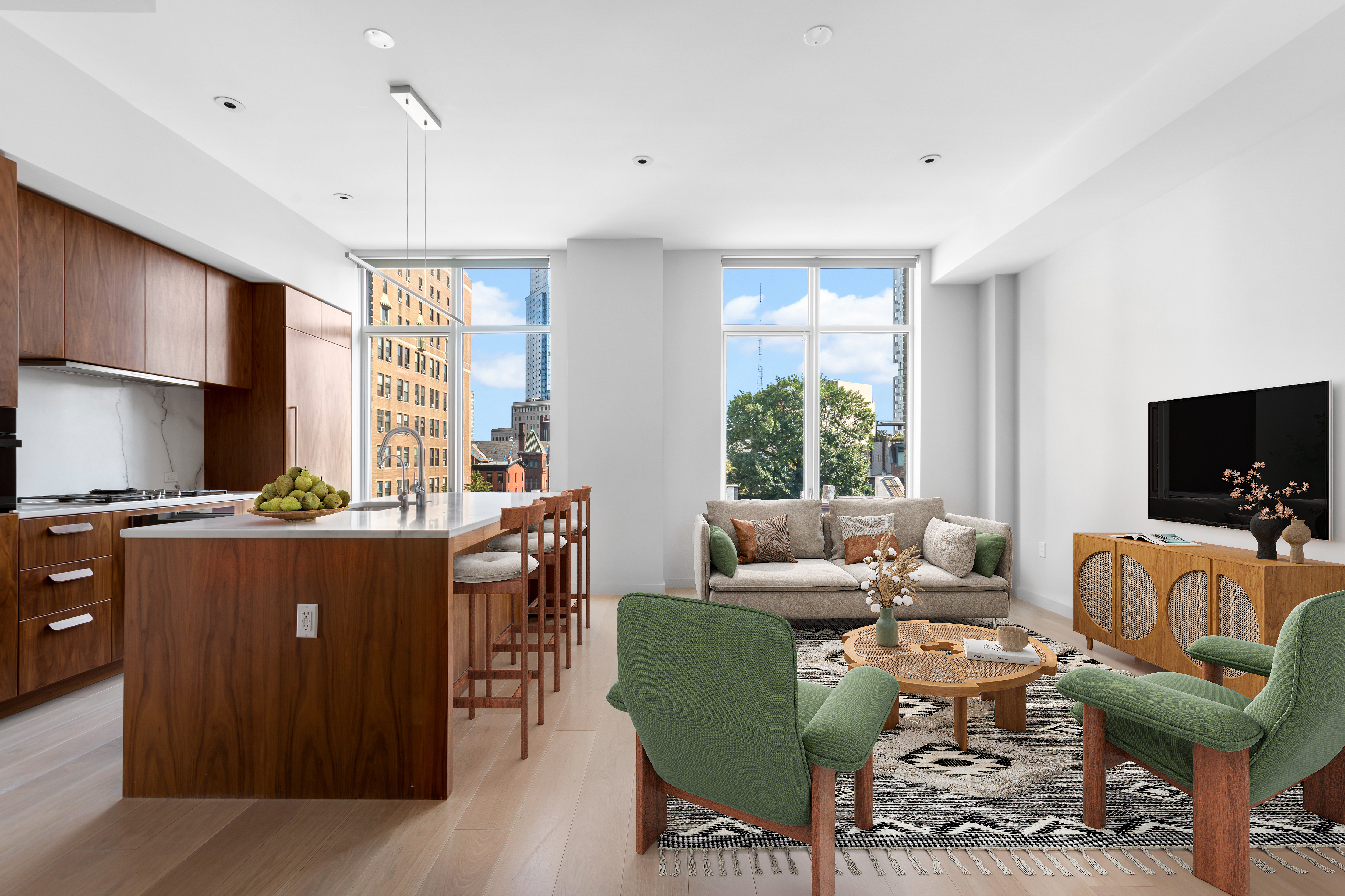 primary photo for 509 Pacific Street 5-D, Brooklyn, NY 11217, US