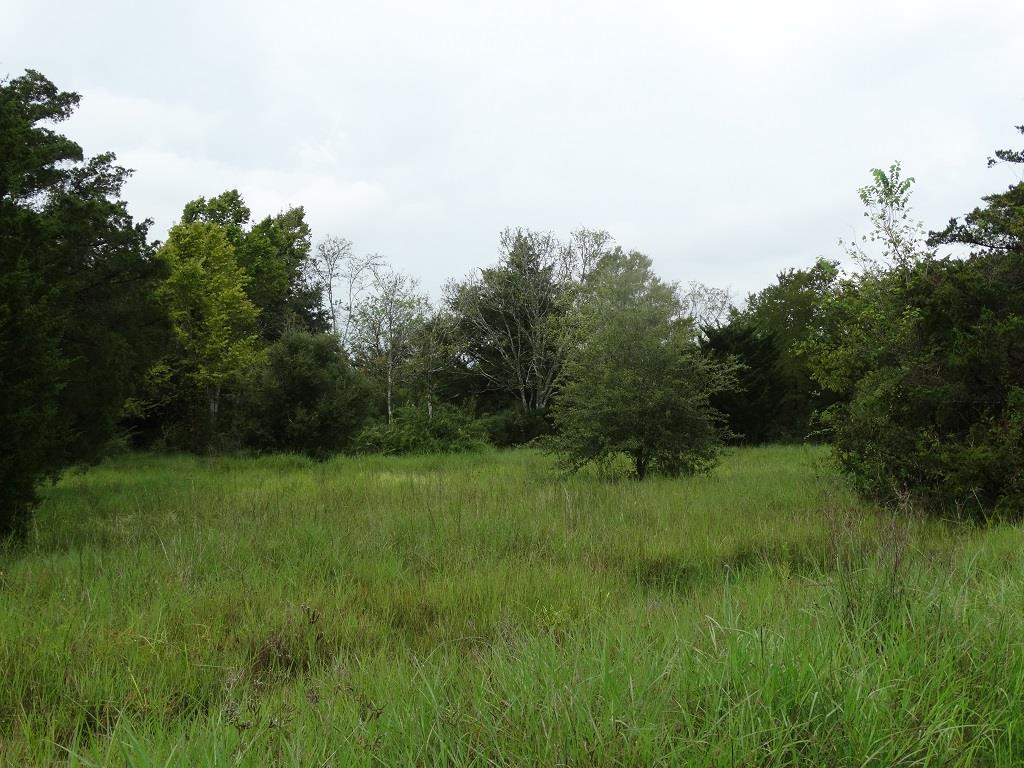 4350 County Road 160, Alvin, TX 77511