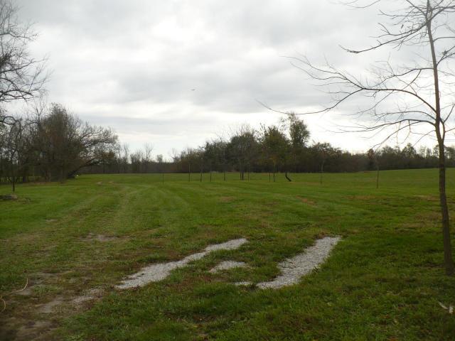 S Farm Road 75, Republic, MO 65738