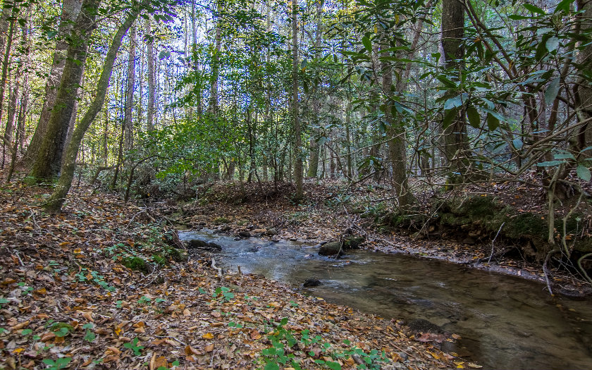 4 Autumn Ln Ellijay, GA