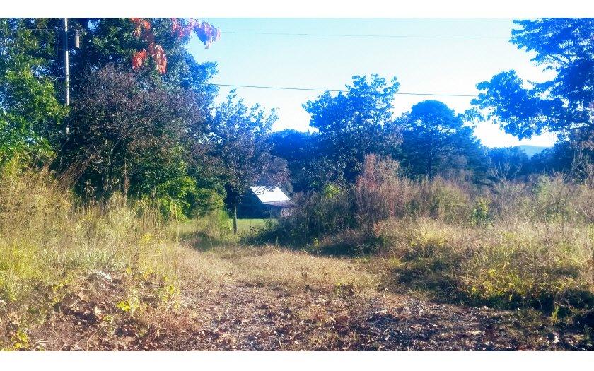 755 Hamby Rd Blue Ridge, GA