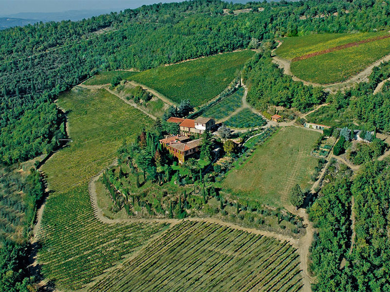Beautiful country estate in Chianti