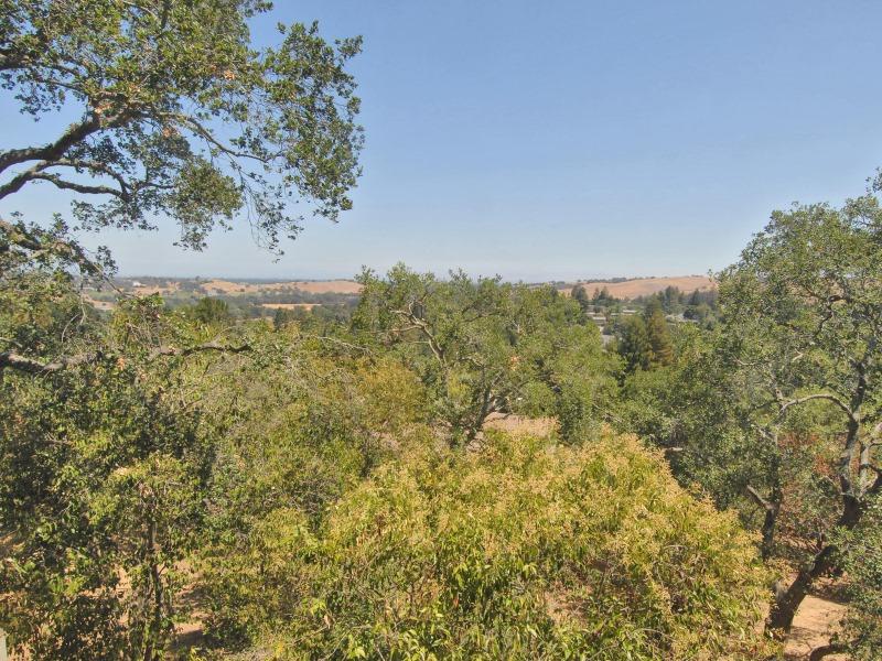 142 Pecora Way, Menlo Park, CA 94028