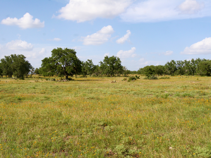 1165 Highway 41, Mountain Home, TX 78058