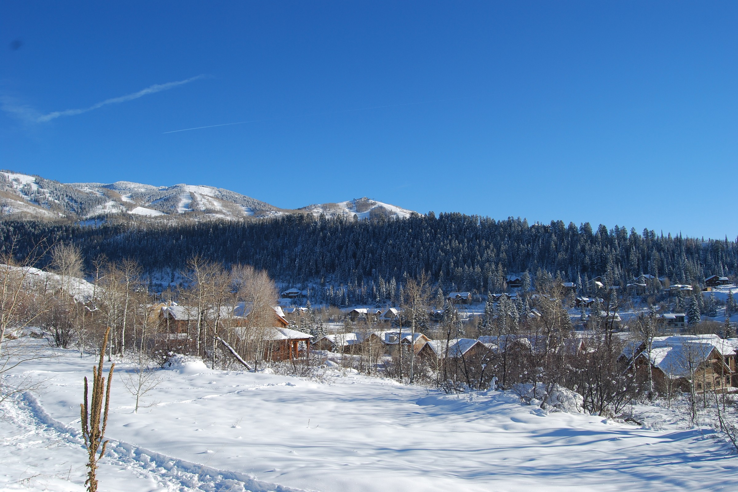 888 Steamboat Blvd, Steamboat Springs, CO 80487