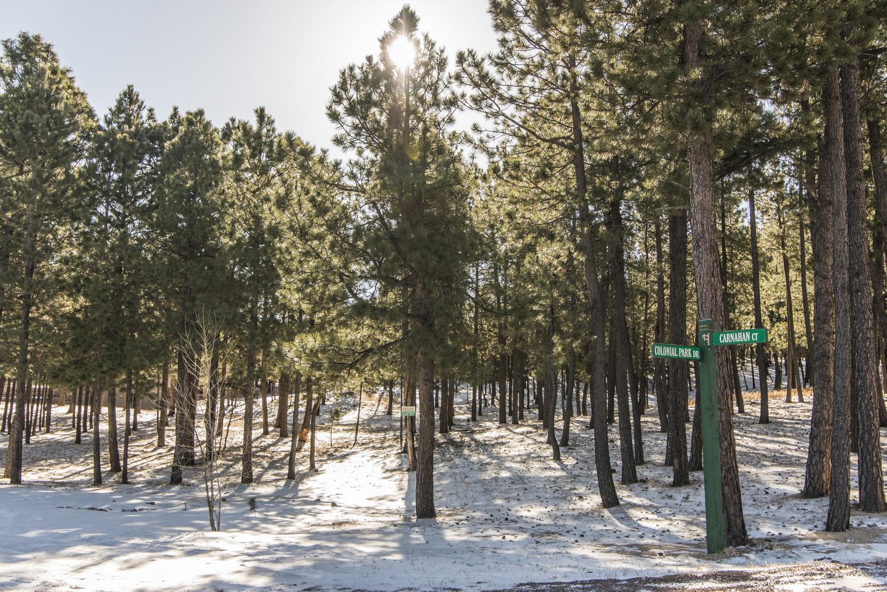 17523 Colonial Park Dr, Monument, CO 80132