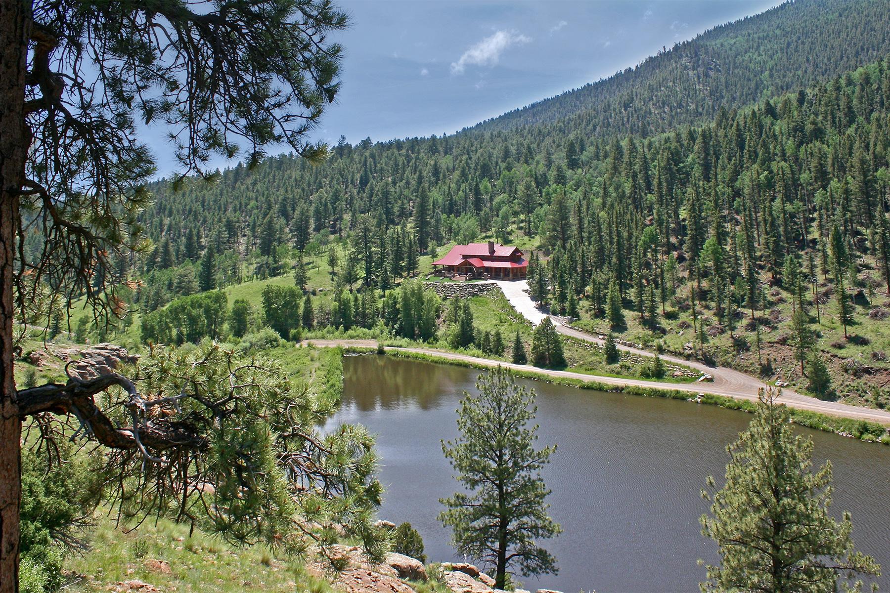 711 Elk Creek Dr, South Fork, CO 81154