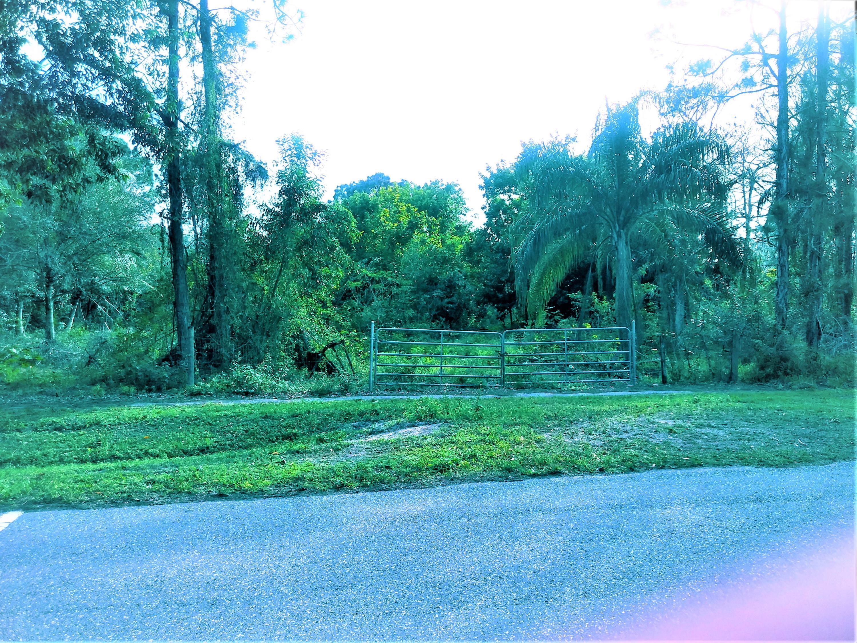 Xxxxx W Prado Blvd, Loxahatchee in Palm Beach County, FL 33470 Home for Sale