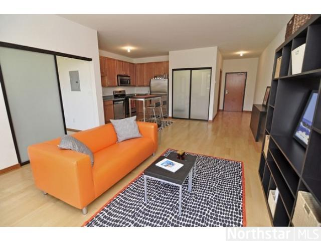 Rental Homes for Rent, ListingId:23519408, location: 15 E Franklin Avenue Minneapolis 55404