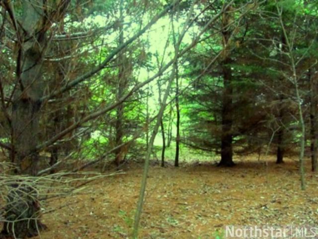 2.02 acres by Stanchfield, Minnesota for sale