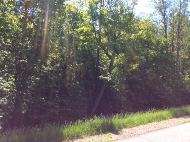 Sugar Lake Trail - photo 4