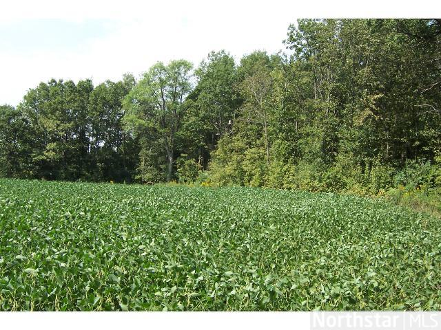 5 acres by New Prague, Minnesota for sale