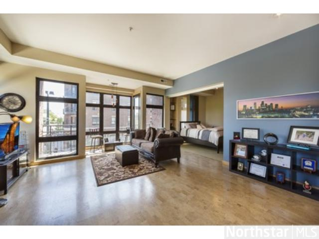 Rental Homes for Rent, ListingId:28470457, location: 9 W Franklin Avenue Minneapolis 55404
