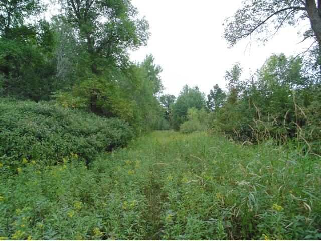 64.64 acres by Mora, Minnesota for sale
