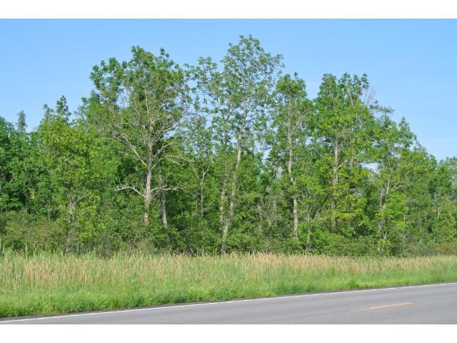 40 acres Haypoint, MN