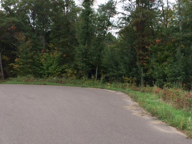 18.79 acres by North Branch, Minnesota for sale