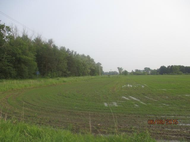 38.66 acres by Rush City, Minnesota for sale