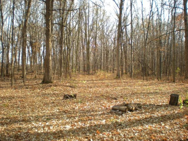 20 acres by Taylors Falls, Minnesota for sale