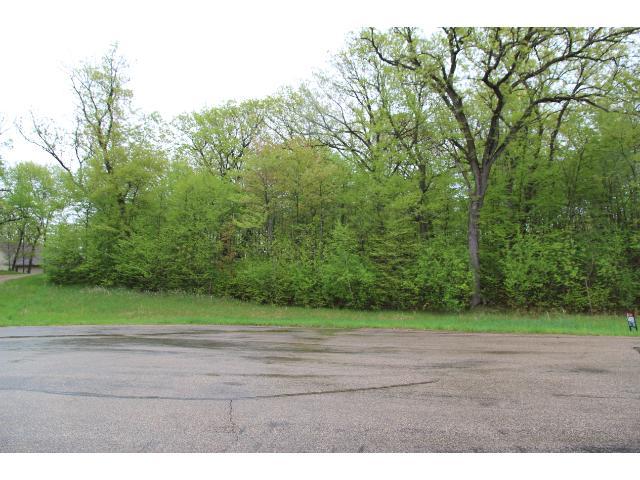 Real Estate for Sale, ListingId: 32580957, Annandale,MN55302