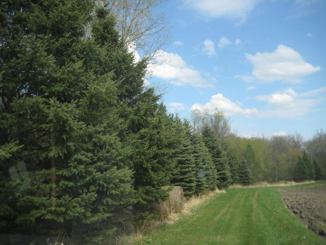 Real Estate for Sale, ListingId: 33094146, Forest Lake,MN55025