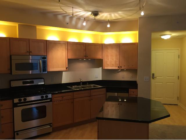 Rental Homes for Rent, ListingId:35379967, location: 500 E Grant Street Minneapolis 55404