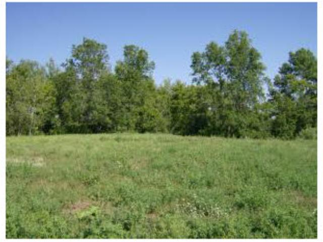 Real Estate for Sale, ListingId: 35822545, Albany,MN56307