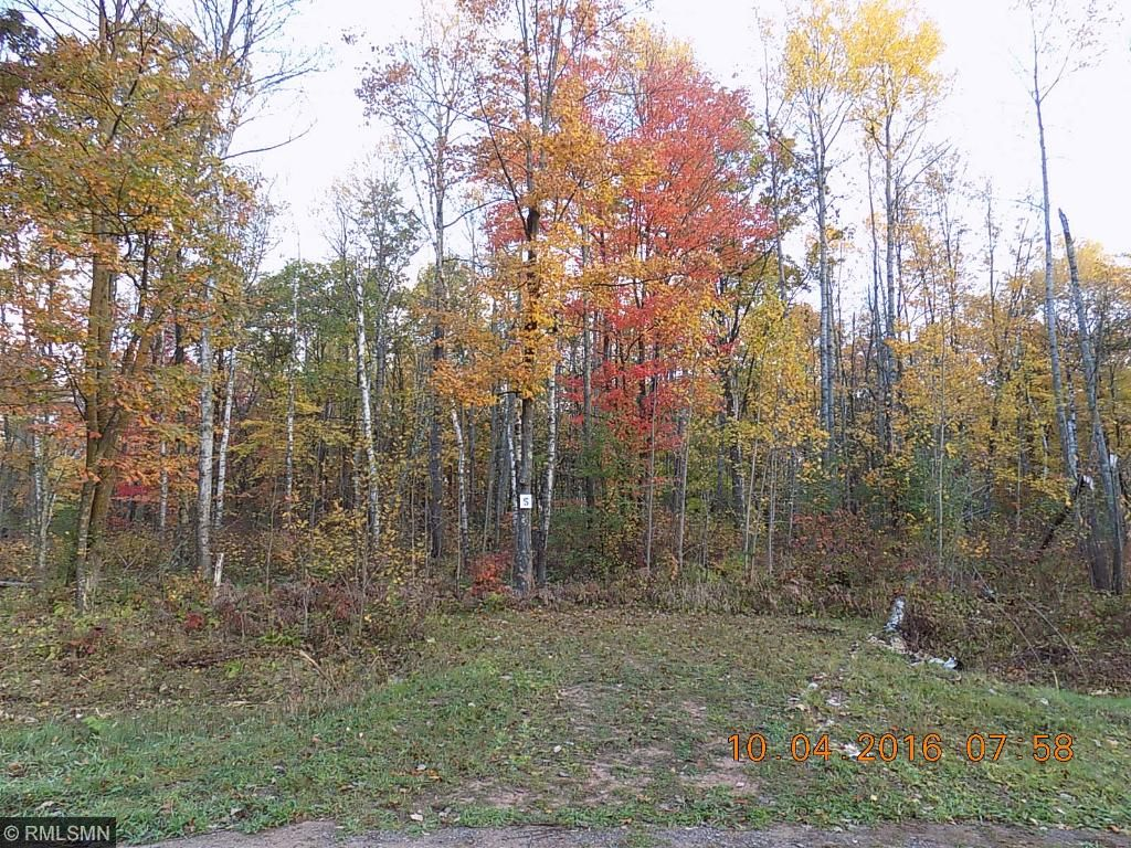 54533 United Country Court Sandstone, MN 55072