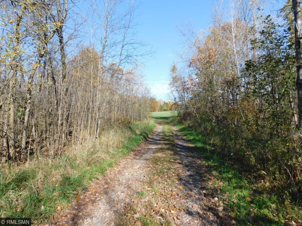 Image of Acreage for Sale near Hillman, Minnesota, in Morrison County: 60 acres