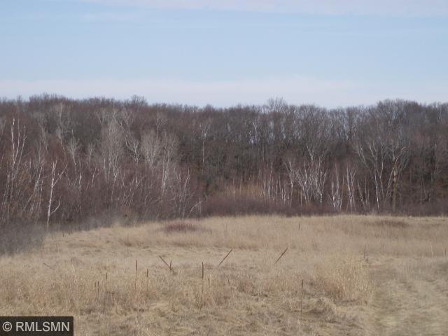 Image of Acreage for Sale near Cushing, Wisconsin, in Polk County: 60 acres