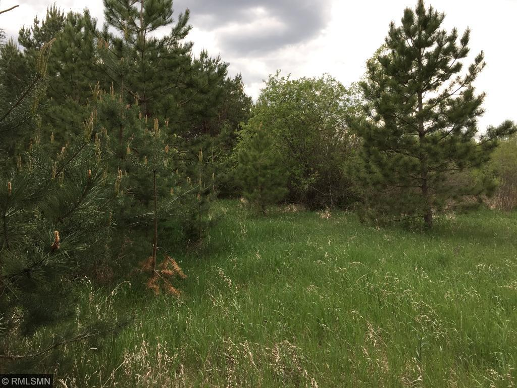 Image of Acreage for Sale near Richmond, Minnesota, in Stearns County: 77.32 acres