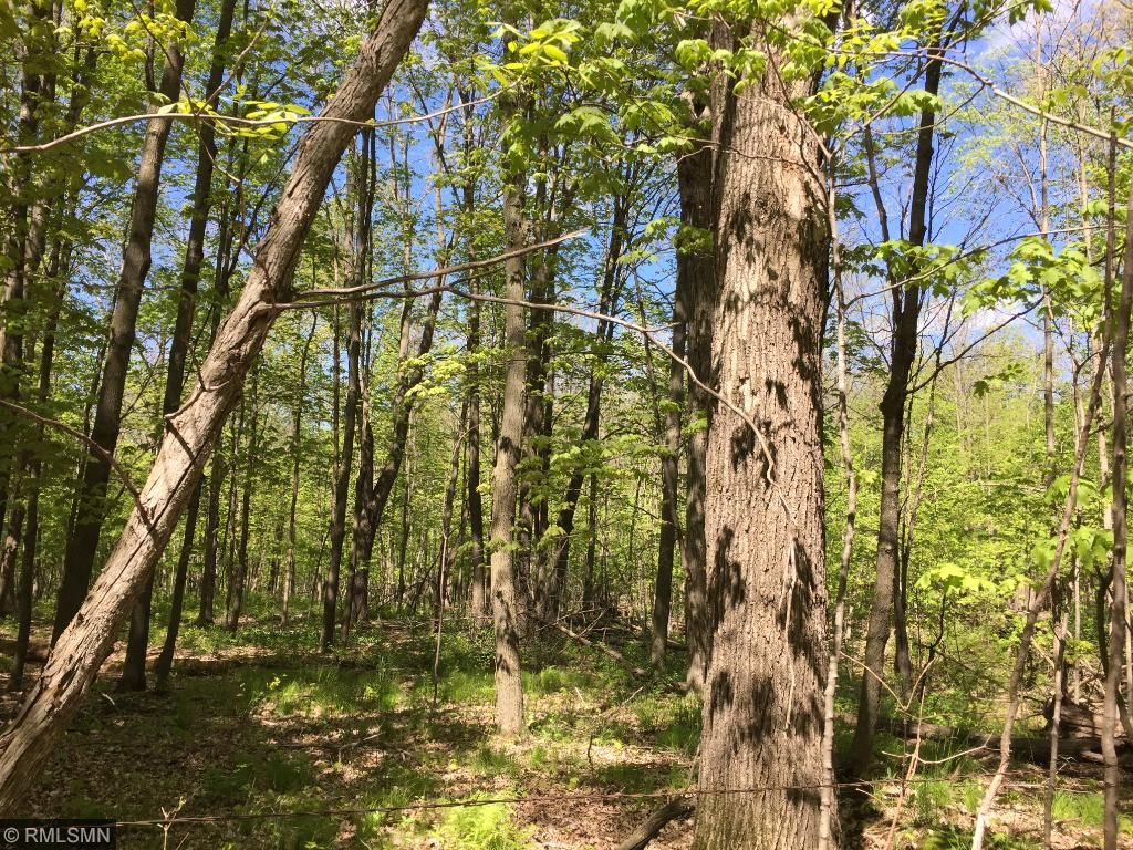 Image of  for Sale near Birchwood, Wisconsin, in Sawyer County: 43 acres