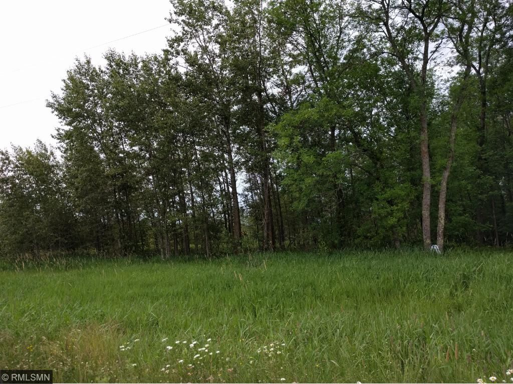 Image of  for Sale near East Lake, Minnesota, in Aitkin County: 40 acres
