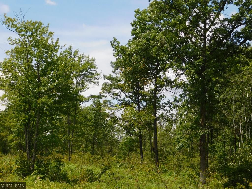 Image of  for Sale near Brook Park, Minnesota, in Kanabec County: 80 acres