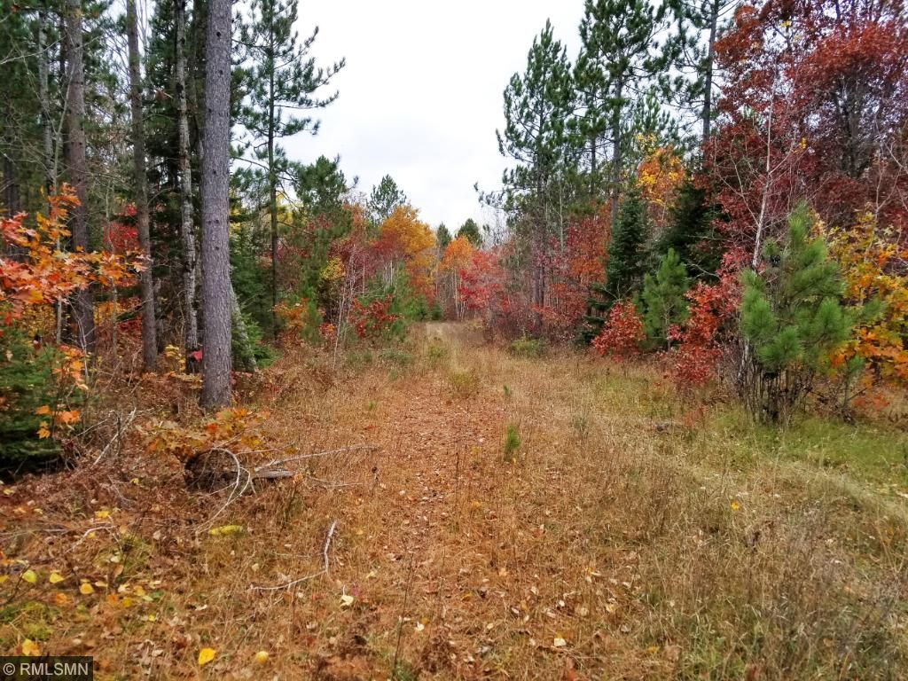 Image of  for Sale near Holyoke, Minnesota, in Carlton County: 80 acres