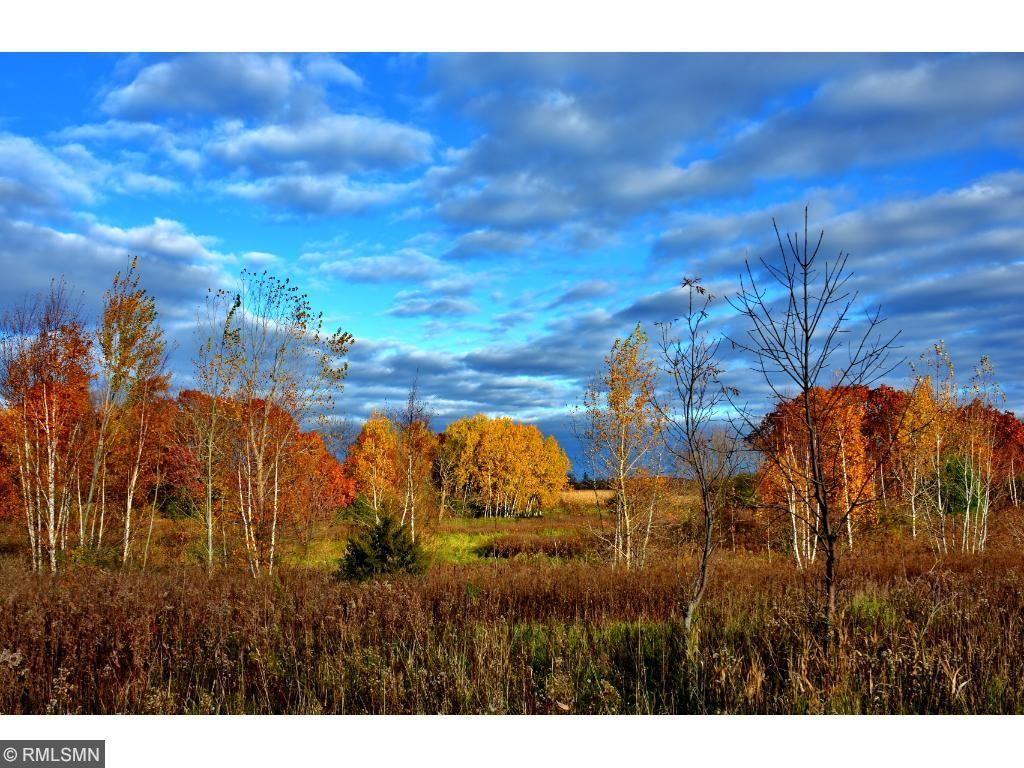 37591 Park Trail Amador Township, MN 55012