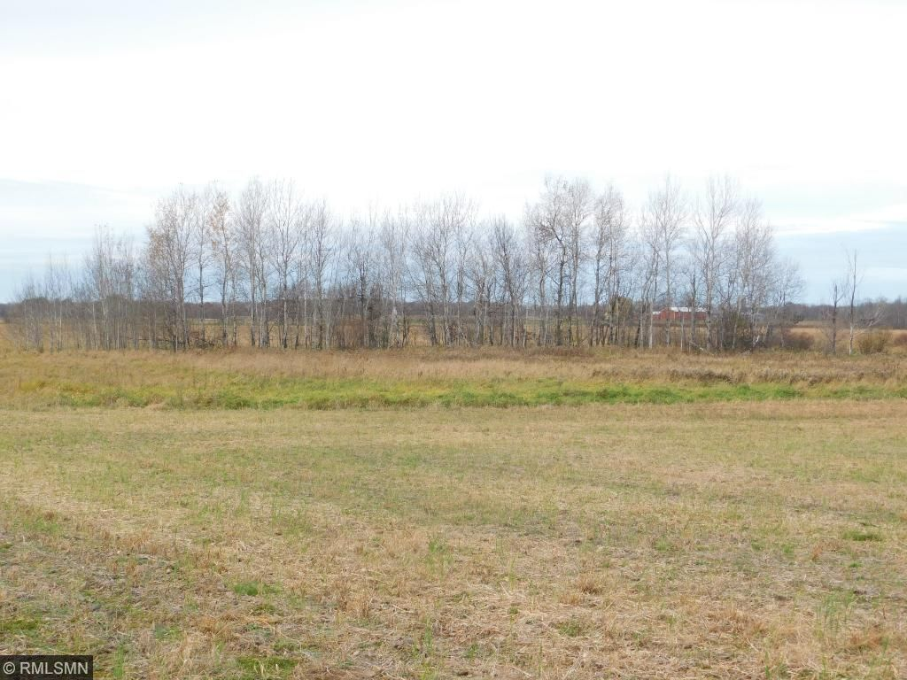 Image of  for Sale near Grasston, Minnesota, in Kanabec County: 100.13 acres
