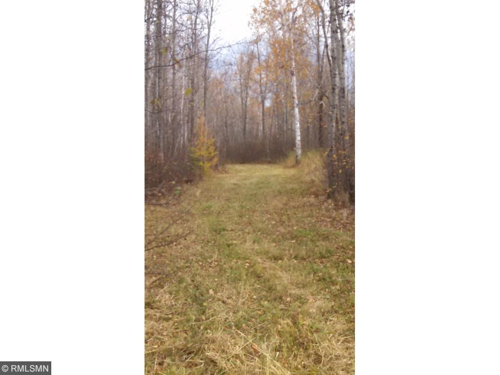 Image of  for Sale near Floodwood, Minnesota, in Saint Louis County: 210 acres