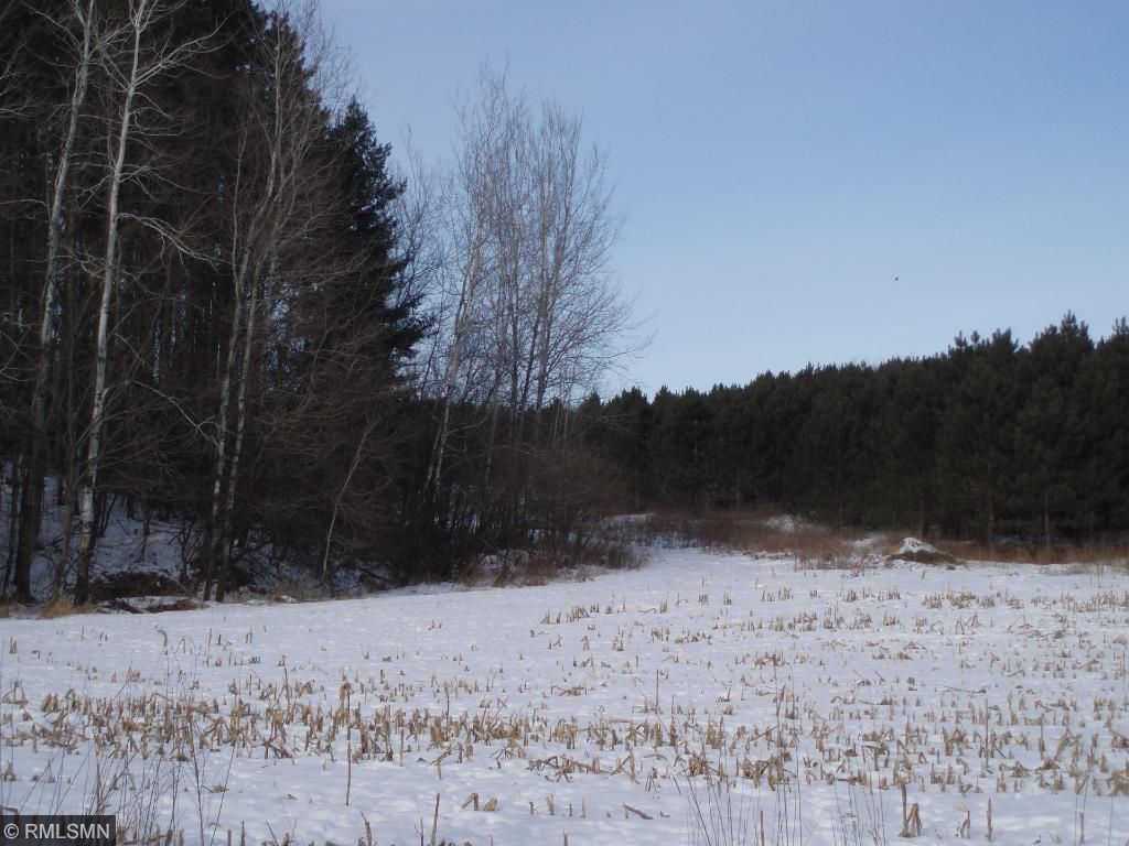 Image of  for Sale near Glenwood City, Wisconsin, in Saint Croix County: 35.42 acres