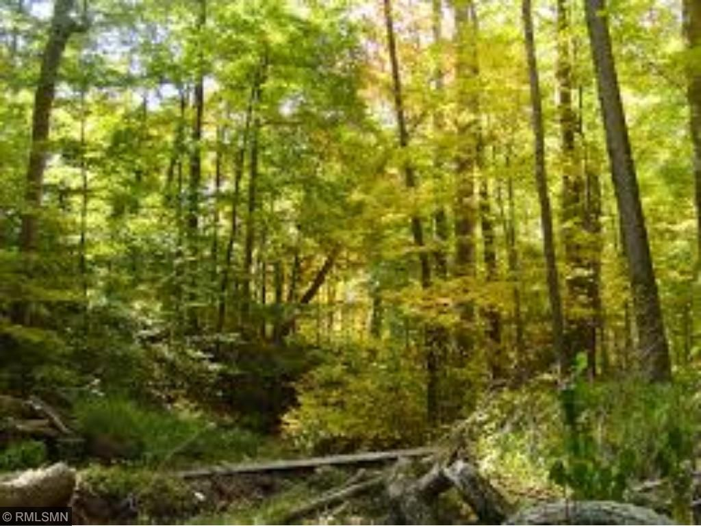 Image of  for Sale near Eveleth, Minnesota, in Saint Louis County: 481.6 acres