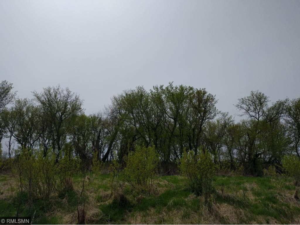 Image of  for Sale near Stewart, Minnesota, in McLeod County: 40 acres