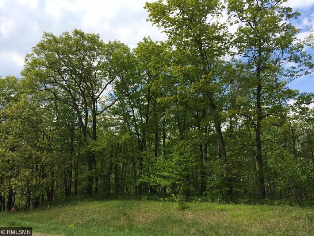 Image of  for Sale near Luck, Wisconsin, in Polk County: 40.25 acres
