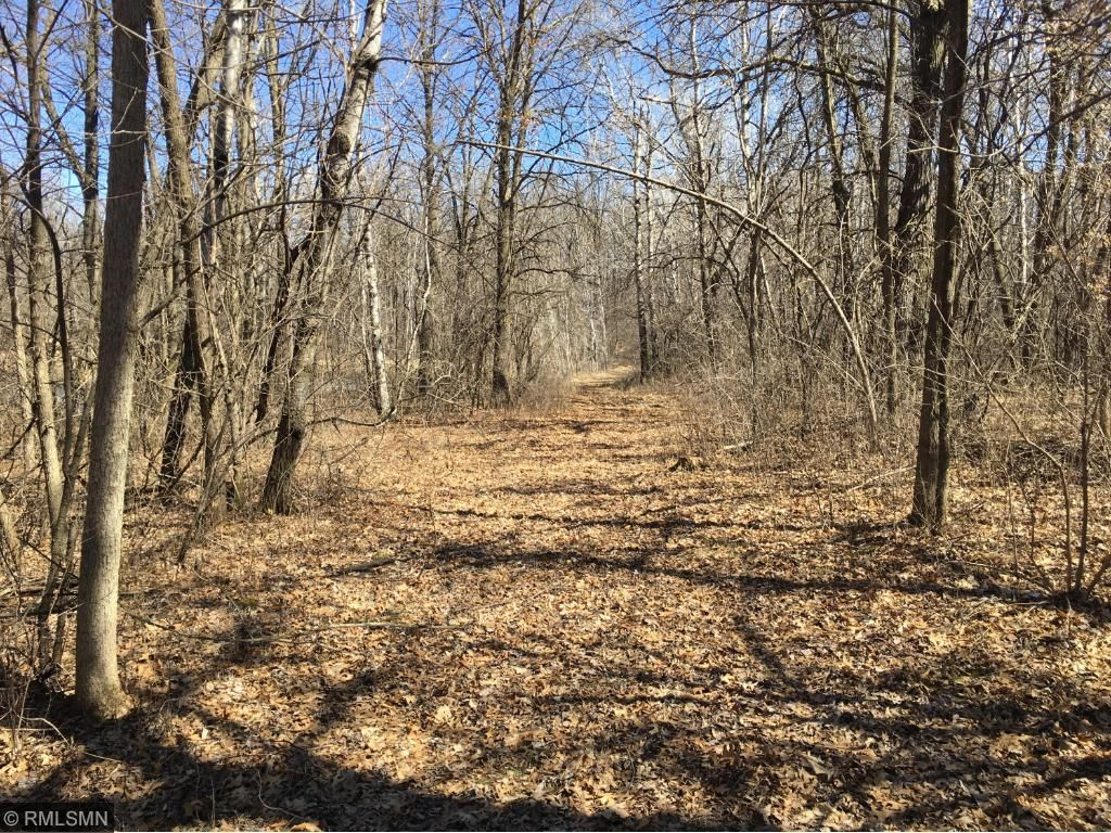 Image of  for Sale near Sauk Centre, Minnesota, in Stearns County: 16 acres